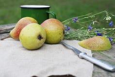 Päron på frilufts- royaltyfri fotografi