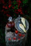 Päron-tranbär likör Stiltappning Selektivt fokusera royaltyfria bilder