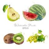 Päron vattenmelon, kiwi, druva Arkivbild