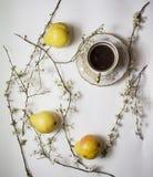 Päronblom med koppen kaffe Royaltyfri Fotografi