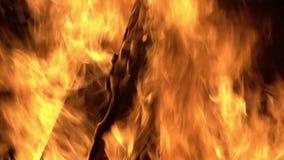 płonący ogień zbiory wideo