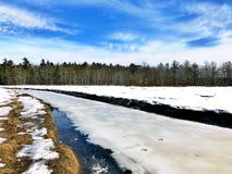 Pływowy solankowy bagno przy Rachel Carson obywatela rezerwat dzikiej przyrody obraz stock