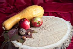 På är runda träjournaler en pumpa, två äpplen, valnötter och haz Arkivfoto