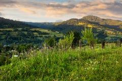 By på backeäng med skogen i berg Royaltyfri Fotografi