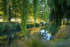 På bankerna av floden Avon i sommar Royaltyfri Foto