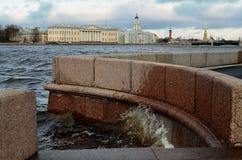 På bankerna av Nevaen Arkivbild