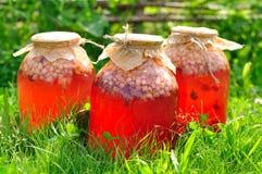 På burk blandad fruktkompott Royaltyfri Bild