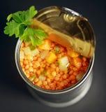 På burk lins och blandad grönsaksoppa arkivfoton