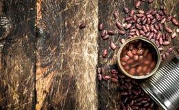 På burk röda bönor i tenn- cans arkivfoto