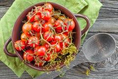 På burk tomater Royaltyfri Bild