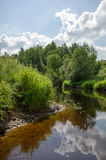 På den bevuxna flodbanken under vita moln Fotografering för Bildbyråer