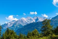På den fotvandra banan på Bernese Oberland Royaltyfri Fotografi