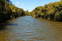 På den regniga säsongen översvämmar floder över dess marginaler royaltyfri bild