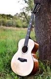 På en äng nära ett träd en akustisk gitarr arkivfoto