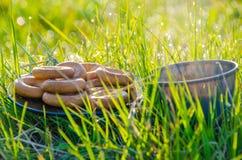 På en grön gräsmatta i den tidiga dimmiga morgonen Te royaltyfri foto