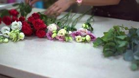 På en liten tabell lägger en blomsterhandlareflicka ut ljusa och härliga blommor stock video