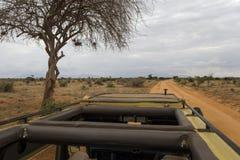 På en safari Arkivbilder