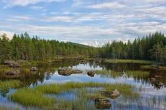 På en sjö i Sverige Royaltyfri Foto