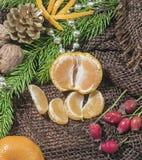 På en tabell som täckas med säckväv, är stearinljus är tangerin, kottar, gran eller sörjer fattar och bär härlig vektor för julde Royaltyfria Foton