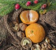 På en tabell som täckas med säckväv, är stearinljus är tangerin, kottar, gran eller sörjer fattar och bär härlig vektor för julde Royaltyfri Bild