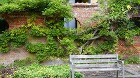 På en trädgård Royaltyfri Bild