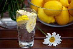 På en trätabell är ett exponeringsglas av vatten med citronen och en vas av citroner royaltyfri bild