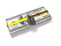 på en vit bakgrundspacke stängde dollar låset, begreppet av de säkra lagringsfonderna, 3d framför Royaltyfria Bilder