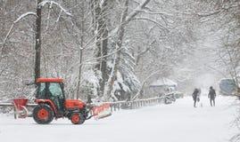 På engelska trädgård för vinter, Munich Royaltyfria Bilder