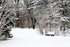 På engelska trädgård för vinter, Munich Royaltyfria Foton