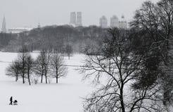 På engelska trädgård för vinter, Munich Royaltyfri Foto