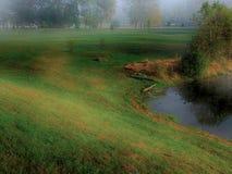 På ett fält av gräsplan Royaltyfria Foton