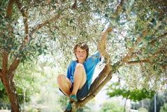 På ett träd 1 Royaltyfri Foto
