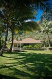 På ferie till Hawaii Fotografering för Bildbyråer