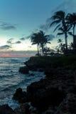 På ferie till Hawaii Arkivfoto