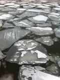 Is på floden Fotografering för Bildbyråer