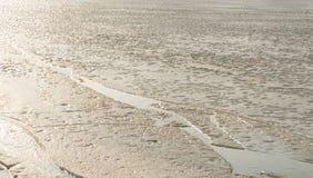 Is på floden Arkivbild