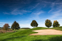 På golfbanan Fotografering för Bildbyråer