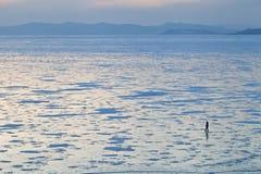 Is på havet royaltyfria bilder