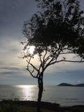 På havet Royaltyfri Foto