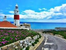 På klipporna av Gibraltar Royaltyfri Foto