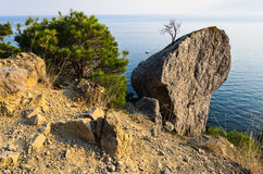 På kust Royaltyfri Foto