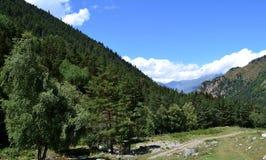 På lutningarna och i dalarna av det stora Kaukasuset Arkivfoto