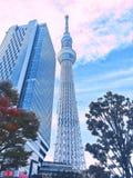 På måfå Tokyo från vad jag ser Royaltyfria Foton