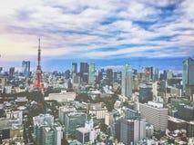 På måfå Tokyo från vad jag ser Arkivbild