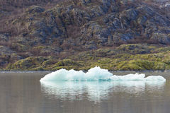 Is på Mendenhall glaciär sjön Royaltyfri Bild