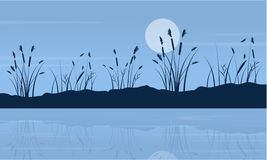 På nattsjölandskap med månen Arkivbild