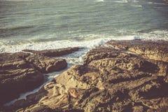 På segla utmed kusten Arkivfoto