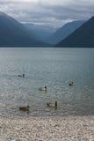 And på sjön i Nelson Lakes National Park royaltyfri foto