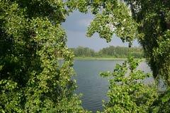 På sjön i sommar fotografering för bildbyråer