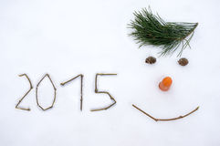 2015 på snö Arkivbilder